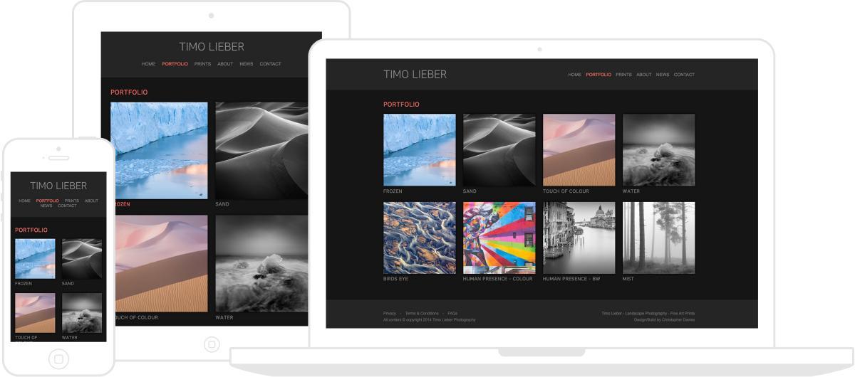 Timo Lieber Website by Chris Davies Web Design